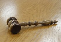 Судья Алтайского краевого суда постановила отпустить из СИЗО 14-летнюю обвиняемую в избиении и изнасиловании 11-летней ученицы начальных классов.