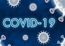 Германия: Институт Роберта Коха опубликовал данные о заболеваемости Covid-19 на 17 июня