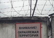 В Калужской области зверски убившему свою сожительницу дали 10 лет