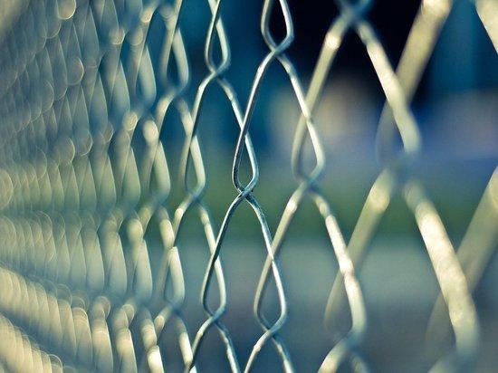 Литва собралась построить забор на границе с Белоруссией