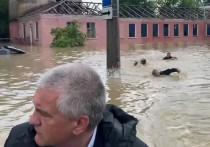 В пресс-службе главы Крыма Сергея Аксенова прокомментировали инцидент на затопленной паводком улице в Керчи, где чиновника преследовали трое пловцов