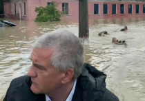 Мужчины, которые поплыли за лодкой главы Крыма Сергея Аксенова в затопленной Керчи, не были сотрудниками МЧС