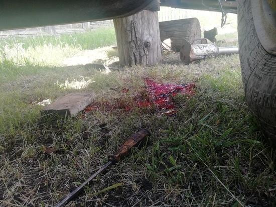 В Рязанской области мужчина погиб, ремонтируя «КамАЗ»