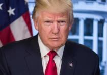 Дональд Трамп практически исчез со сцены 20 января, но водевили о нем продолжают ставиться Сопротивлением и по сей день