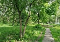 В Уварове благоустроят сразу четыре территории