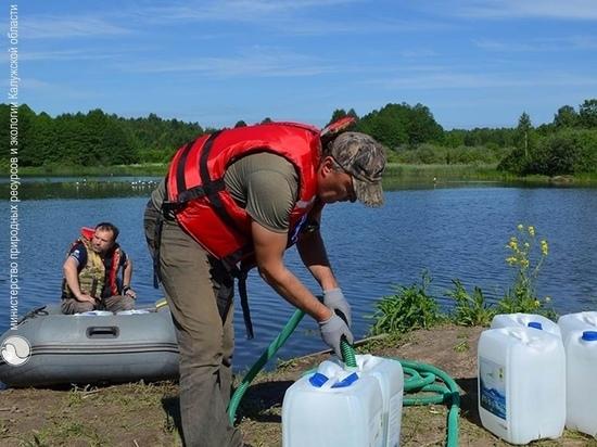 В калужское озеро Ломпадь выпустили 5 тонн хлореллы