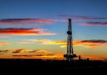 Российский экспортный сорт нефти Urals столкнулся с серьезным конкурентом в борьбе за поставки в европейские страны