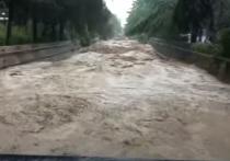 Потоп в Ялте не достиг бы таких масштабов, если бы городские власти вовремя расчистили русла рек, уверены местные жители