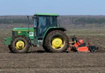На юге России массовая уборка овощей и картофеля начнется уже в середине июля