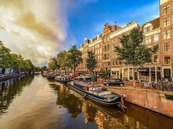 В Нидерландах объявили о смягчении локдауна из-за коронавируса
