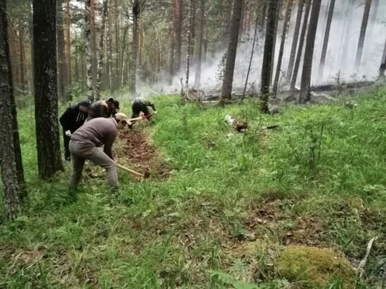 "На Урале горят 63 га заповедника ""Денежкин камень"""