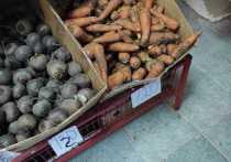 Комитет по пищевке прокомментировал цены на морковь на Ставрополье