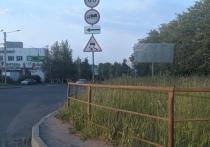 В Петрозаводске активизировались автомобилисты-сторонники стрижки газонов