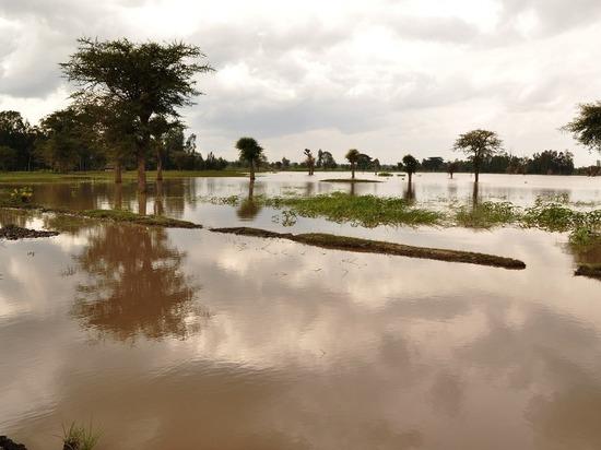В Забайкалье затопило около 300 домов и 680 приусадебных участков