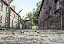 Германия: Бывший охранник Заксенхаузена предстал перед судом