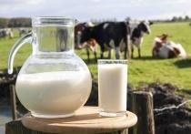 В Нижегородской области увеличилось производство молока