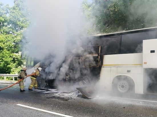 Два автобуса столкнулись на Кубани: один загорелся