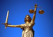 Прокурор Забайкальского края Максим Ершов утвердил обвинительное заключение по уголовному делу в отношении 33-летнего жителя Читы, который выстрелом в закрытую входную дверь соседей убил 9-летнюю девочку