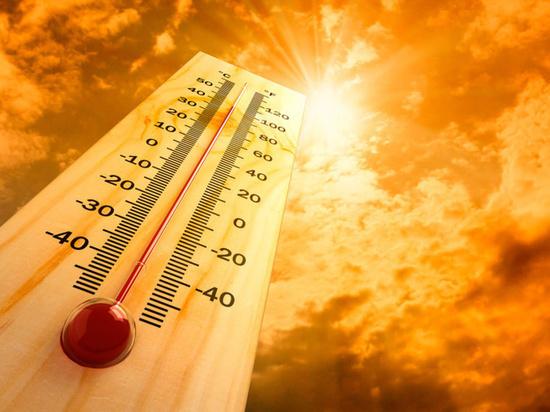 В Калмыкии объявили экстренное предупреждение из-за аномальной жары