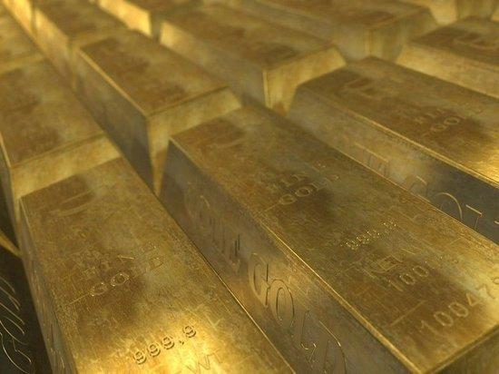 Жители Солонешенского района собирают подписи, чтобы выгнать золотодобытчиков