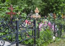Мародеров, которые под покровом ночи спиливали оградки на Жегаловском кладбище в Щёлковском городском округе, взяли с поличным полицейские, патрулировавшие городские улицы