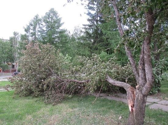 В Свердловской области ожидаются грозы с сильным ветром