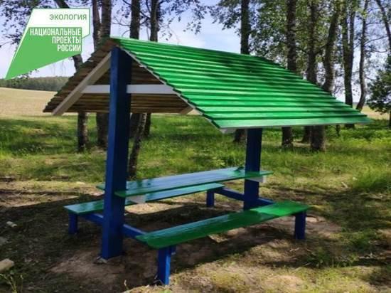 В калужских лесах появились 148 обновленных мест отдыха
