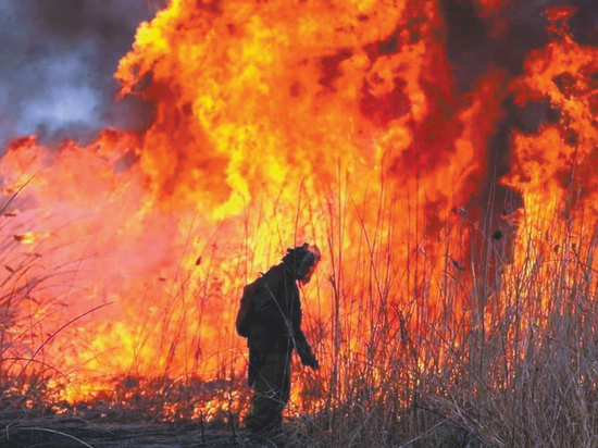 Аномальная жара в европейской части России заставила опасаться лесных пожаров - только дымовой завесы сейчас не хватало