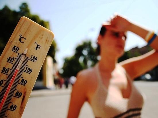 Костромской Гидрометеоцентр сообщает, что вчера в нашем городе был зафиксирован тепловой рекорд для 21 июня — он более, чем на градус перекрыл прежнее погодноедостижение 54-летней давности
