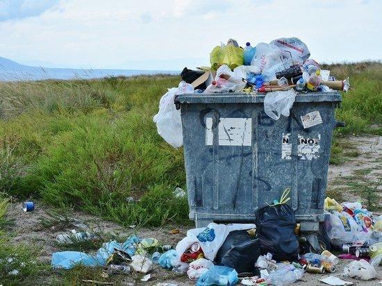 В правительстве поддержали новый штраф за выброс мусора