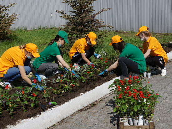 В наше время многие ответственные организации и предприятия формируют добровольные объединения молодых людей — с думой о будущем, для воспитания и занятости подрастающего поколения