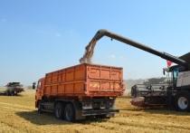 Основной этап уборки урожая на Ставрополье запланирован на начало июля