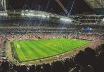 Депутат Верховной рады Алексей Гончаренко обратился в Союз европейских футбольных ассоциаций с предложением провести в других городах матчи Евро-2020, которые должны пройти в Санкт-Петербурге