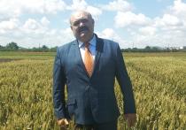 Когда Украина в 2014 году перекрыла плотиной Северо-Крымский канал, сельскому хозяйству Крыма прочили «скорую смерть» без днепровской воды