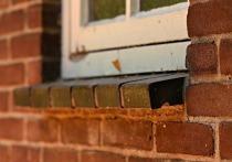 В Кирове из окна жилого дома выпал 4-летний мальчик