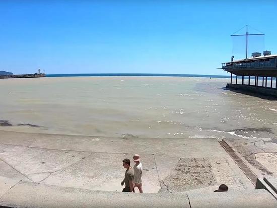 """Аксенов удивился купающимся в грязном море Ялты: """"Отважные люди есть"""""""