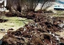 ДВ-гектар с мусором под Читой заменили после вмешательства Генпрокуратуры РФ
