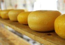 Молочка подорожает: алтайские производители рассказали, к чему приведет маркировка продукции