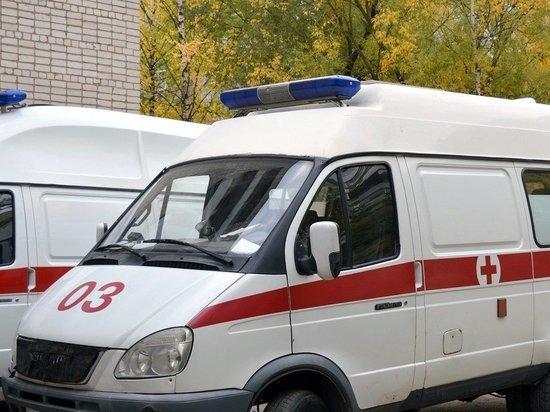 В Приморье клещ стал причиной аварии с тремя пострадавшими