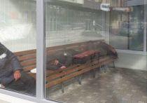 В компании «КапиталСтрой» прокомментировали инцидент на одной из тёплых остановок, о котором «МК в Омске» писал во вторник, 22 июня