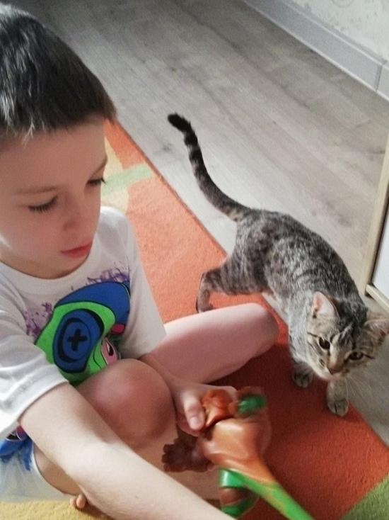 На Ставрополье неполным семьям разъяснили порядок получения новых пособий