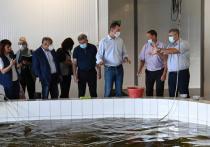 Эксперты позитивно оценили идею Михаила Дегтярёва провести форум по сохранению Амура