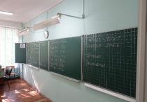 Омские школьники начали сдавать последний предмет основного этапа ЕГЭ