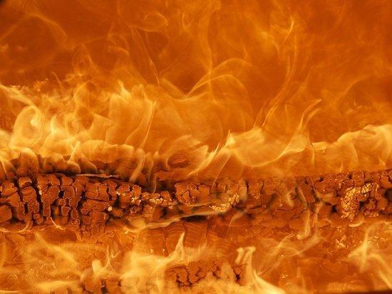 Двухэтажный дом горел в деревне Борисовичи в Псковском районе