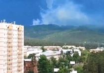 В шести километрах от Читы был ликвидирован лесной пожар, начавшийся 23 июня
