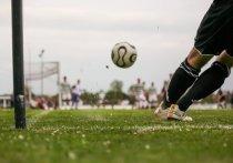 Товарищеский матч между сборными России и Украины предложили провести на стадионе в Сочи