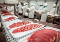 В Нижегородской области увеличилось производство мяса