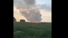 Появились кадры с места крушения вертолета в Ленинградской области