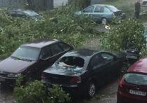 Из-за урагана оказалась обесточена инфекционная больница в Великих Луках