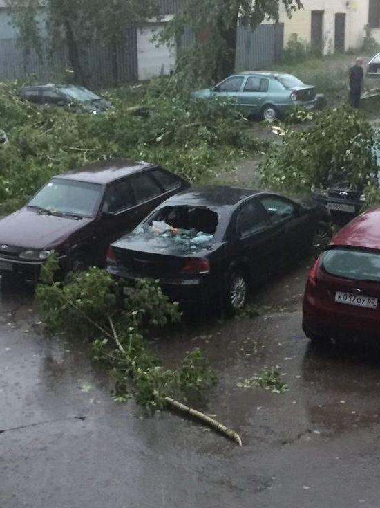 Псковский губернатор озвучил число пострадавших от стихии